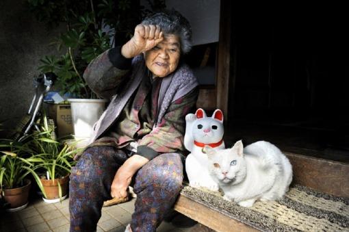 3. CAT